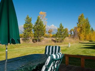 Gorgeous Condo with Deck and Internet Access - Jackson vacation rentals