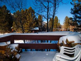 621 Tamarack - Enjoy Jackson Hole from this conveniently located unit! - Wyoming vacation rentals