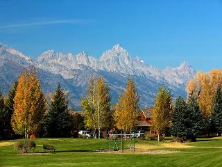Wister A - Great Location for you Jackson Hole Vacation! - Jackson vacation rentals