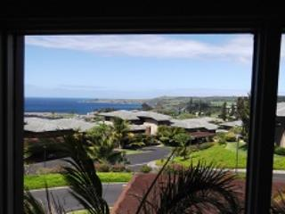 1 bedroom House with Private Outdoor Pool in Kapalua - Kapalua vacation rentals