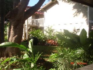 AB108 - AB108 - Hawaii - rentals
