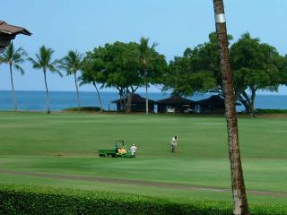MJ218 - Maui vacation rentals