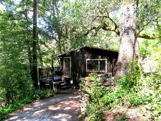 TREEHOUSE GROVE - California Wine Country vacation rentals
