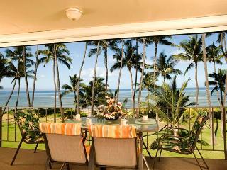 Hale Kai O'Kihei 2 Bedroom 316 - Kihei vacation rentals