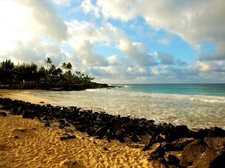 Newly renovated 2 bedroom** CALL NOW - Poipu vacation rentals