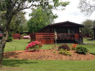 Conifer Lodge, Newton Stewart, Dumfries & Galloway - Newton Stewart vacation rentals