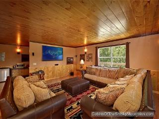 Smokies Tower - Gatlinburg vacation rentals