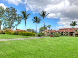 Waikoloa Village Hidaway- Roomy 2 Bed/2 Bath Condo- Ground Floor - Kohala Coast vacation rentals