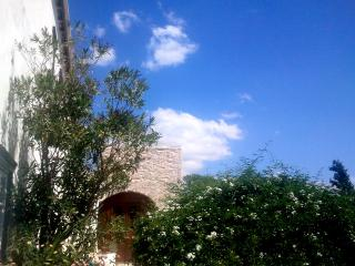 Villa with great sea views & cleaner 2 days/week - Hydra vacation rentals