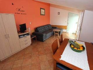 Apartment Zaton (B1) - Zaton (Zadar) vacation rentals