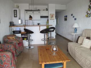 Charming 1 bedroom Condo in Villeneuve-Loubet - Villeneuve-Loubet vacation rentals