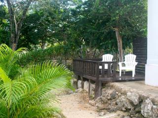 New AKUMAL King Jungle Apt w KITCHEN, AIRCO & WIFI - Akumal vacation rentals