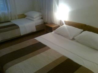 Apartment Mile - 81181-A1 - Plitvice Lakes National Park vacation rentals