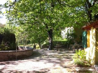 Nice Guest house with Internet Access and Wireless Internet - Barjols vacation rentals