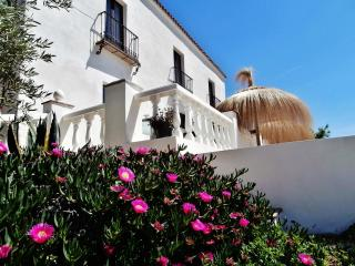 Luxury  villa - formerly an olive farm - 5 bedroom - Province of Cordoba vacation rentals