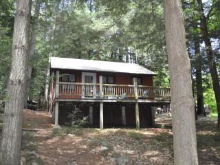 Affordable Friends Lake Cabin - Adirondacks vacation rentals