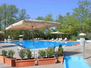 Villa Montagnola on the border of Umbria & Tuscany - Piegaro vacation rentals