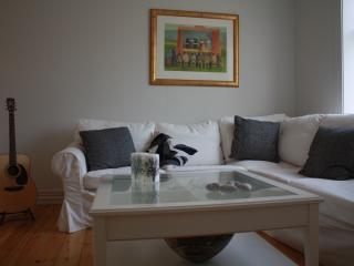 Beautiful Reykjavik center apartment best location - Reykjavik vacation rentals