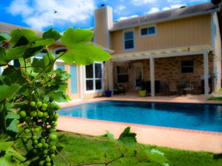 San Antonio Pool Paradise, 4 Bedrooms, Guest House - South Texas Plains vacation rentals