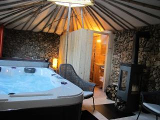 Pet-Friendly Vacation Rental with a Hot Tub and Patio - Saint-Maximin-la-Sainte-Baume vacation rentals