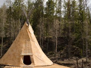 Big Diamond, Glamour Teepee - Dubois vacation rentals