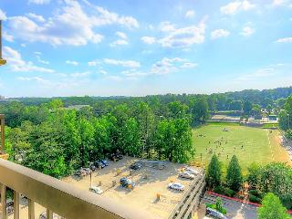 Luxury Hi Rise Atlanta 1 BDR, MARTA - Atlanta vacation rentals