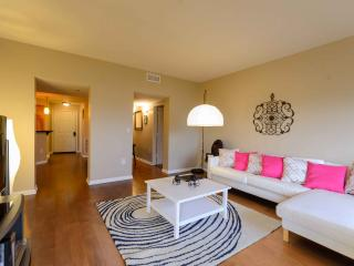Amazing Penthouse,Stunning Views - Atlanta vacation rentals