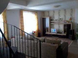 3 bedroom House with Deck in Timisoara - Timisoara vacation rentals