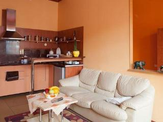 Cosy studio in the very city center - Lithuania vacation rentals