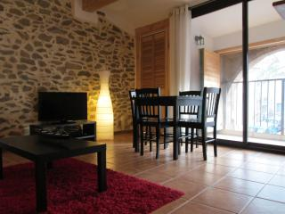 1 bedroom Condo with Dishwasher in Carcassonne - Carcassonne vacation rentals