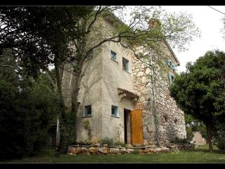 Perfect House with Internet Access and A/C - Labin vacation rentals