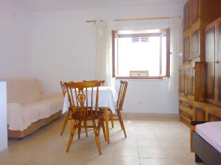 Bright Condo with Internet Access and A/C - Draga Bascanska vacation rentals