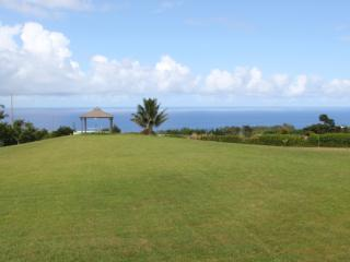 Water Fasting & Detox Retreat in Hawaii - Hilo District vacation rentals