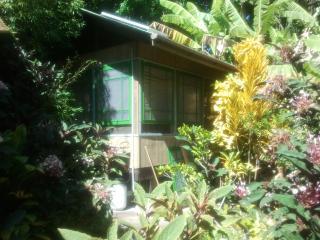 Banana Patch Cottage, a tiny gem! - Hakalau vacation rentals