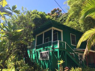 Cozy 1 bedroom Bed and Breakfast in Hakalau - Hakalau vacation rentals