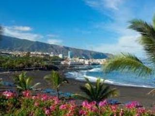 Playa Jardin Puerto de La Cruz - Puerto de La Cruz  Apartamento Playa Jardin - Puerto de la Cruz - rentals