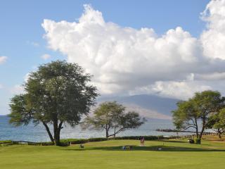 S. Maui 2BR/2BA, Sleep+6,Next to Maui's Best Beach - Kihei vacation rentals