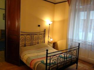 Large Apartment in City Center - Budapest vacation rentals