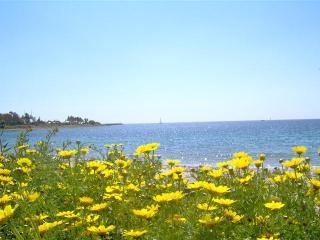Beachfront Villa - COAST to VILLASIMIUS - 4 sleeps - Quartu Sant Elena vacation rentals