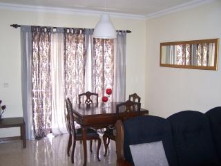 Apartamento T2 - Varandas de Gualtar - Braga vacation rentals