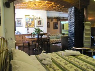 Ethnic open space with big garden - Tirano vacation rentals