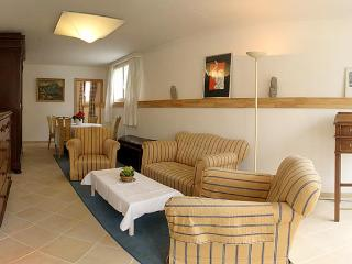 Furnished apartment , Rolle - Rolle vacation rentals