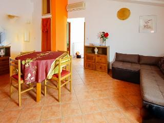 Apartman Elba in green of olive - Vodnjan vacation rentals