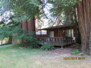 The Sequoia: Privacy and serenity nestled in the redwoods, deck overlooking our private river beach. - Felton vacation rentals