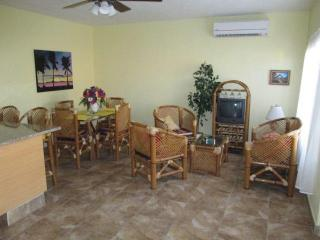 Perfect House with Internet Access and A/C - Chelem vacation rentals