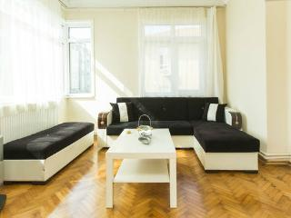 Central & Spacious & BEST PRİCE - Istanbul vacation rentals
