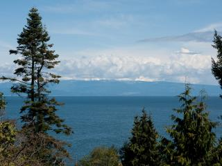 OCEANVIEW SUITE WITH JACUZZI - BREE'S BY THE SEA - Nanoose Bay vacation rentals