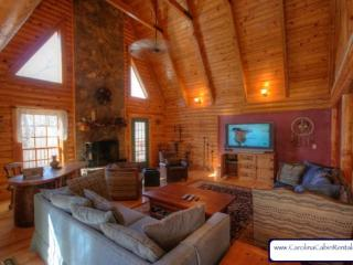 Hummingbird Log Cabin - Blue Ridge Mountains vacation rentals
