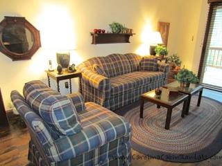 Beechwood Villa - Blue Ridge Mountains vacation rentals
