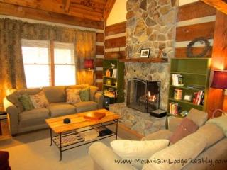 Trailhead Cabin - Boone vacation rentals